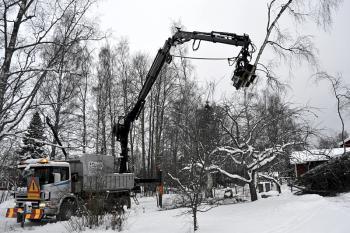 Nedmontering av träd nära bostadshus